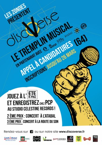 appel_a_candidature_discoverse_vw1