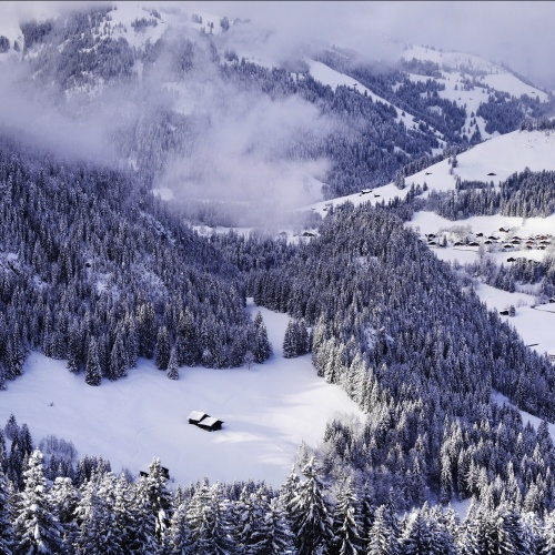 Gstaad paradise
